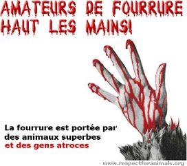 STOP A LA FOURRURE Fourru10