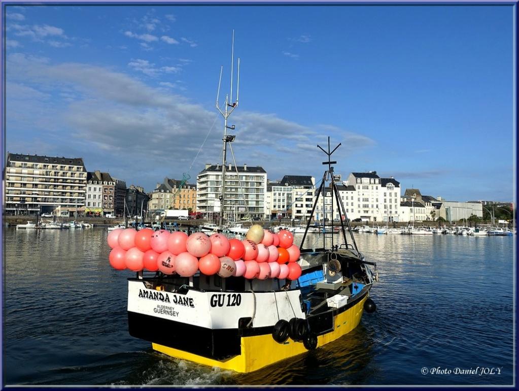 [VIE DES PORTS] Quelques bateaux de pêche (sur nos côtes Françaises) - Page 13 Amanda13
