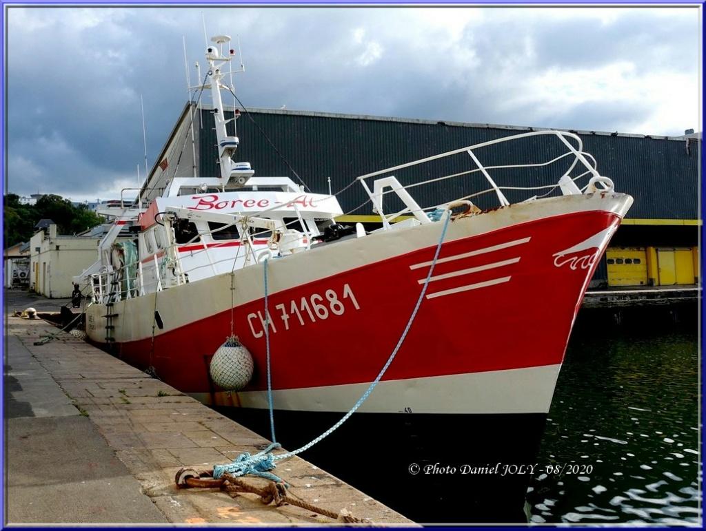 [VIE DES PORTS] Quelques bateaux de pêche (sur nos côtes Françaises) - Page 6 Borzoe10