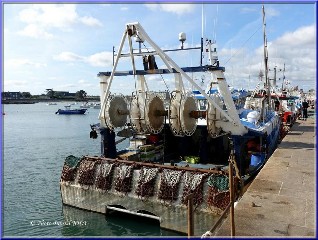 [VIE DES PORTS] Quelques bateaux de pêche (sur nos côtes Françaises) - Page 7 Cap_ze11