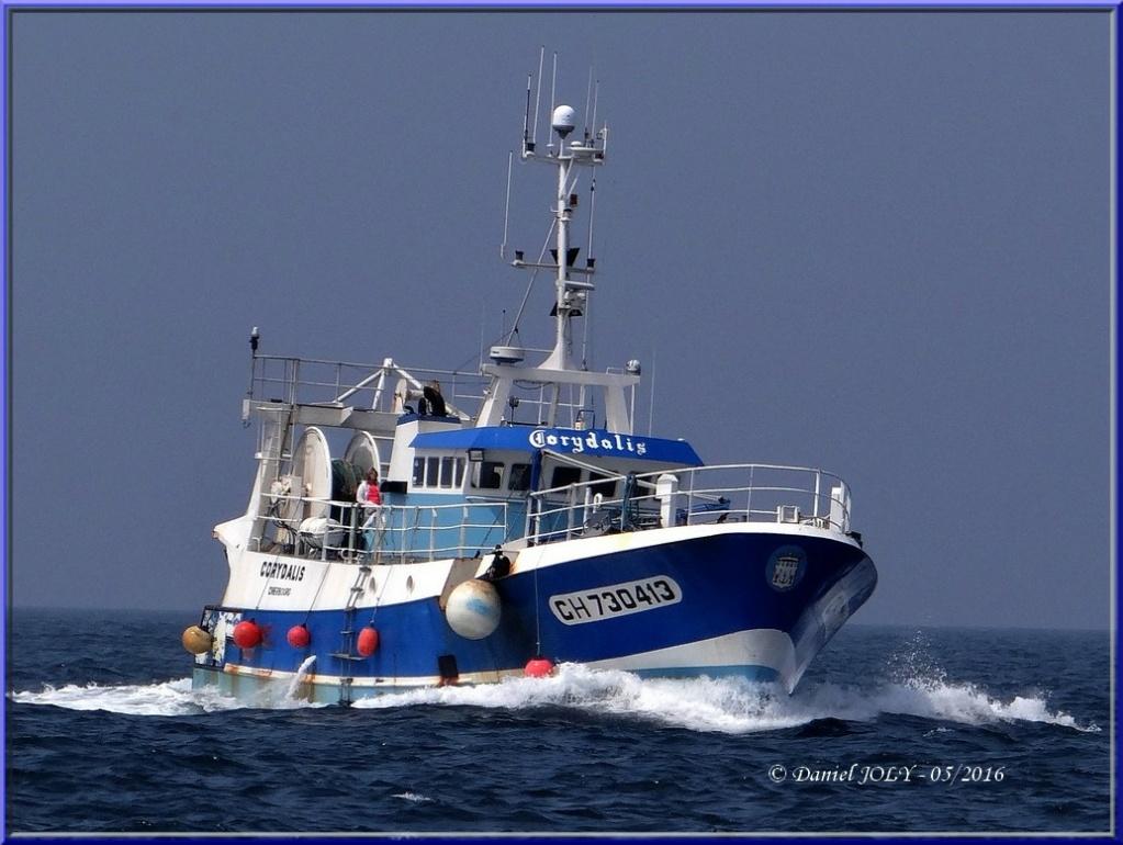[VIE DES PORTS] Quelques bateaux de pêche (sur nos côtes Françaises) - Page 7 Coryda10