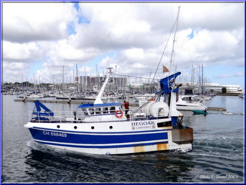 [VIE DES PORTS] Quelques bateaux de pêche (sur nos côtes Françaises) - Page 6 Dsc02610