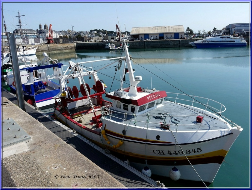 [VIE DES PORTS] Quelques bateaux de pêche (sur nos côtes Françaises) - Page 8 Peccav10