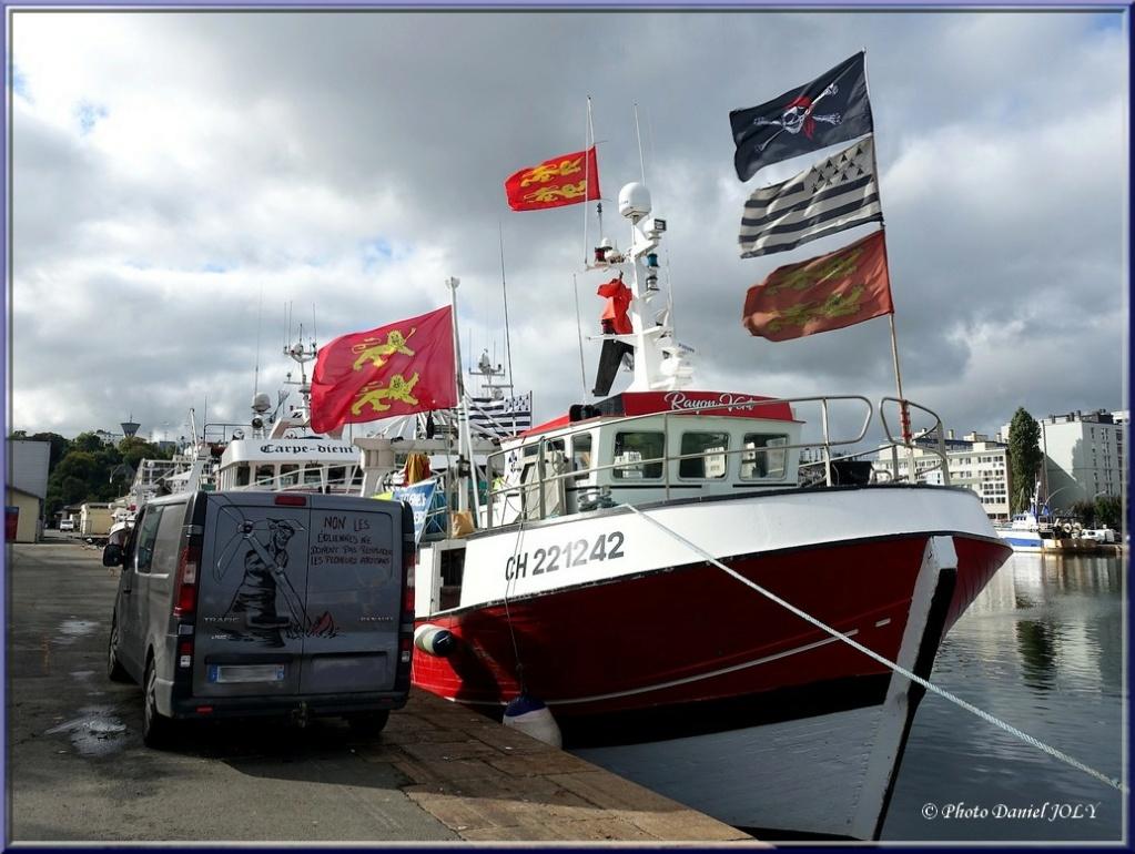 [VIE DES PORTS] Quelques bateaux de pêche (sur nos côtes Françaises) - Page 13 Rayon_10