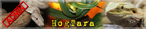 Reptile Day ARRAS 25/06/2017 Signat10
