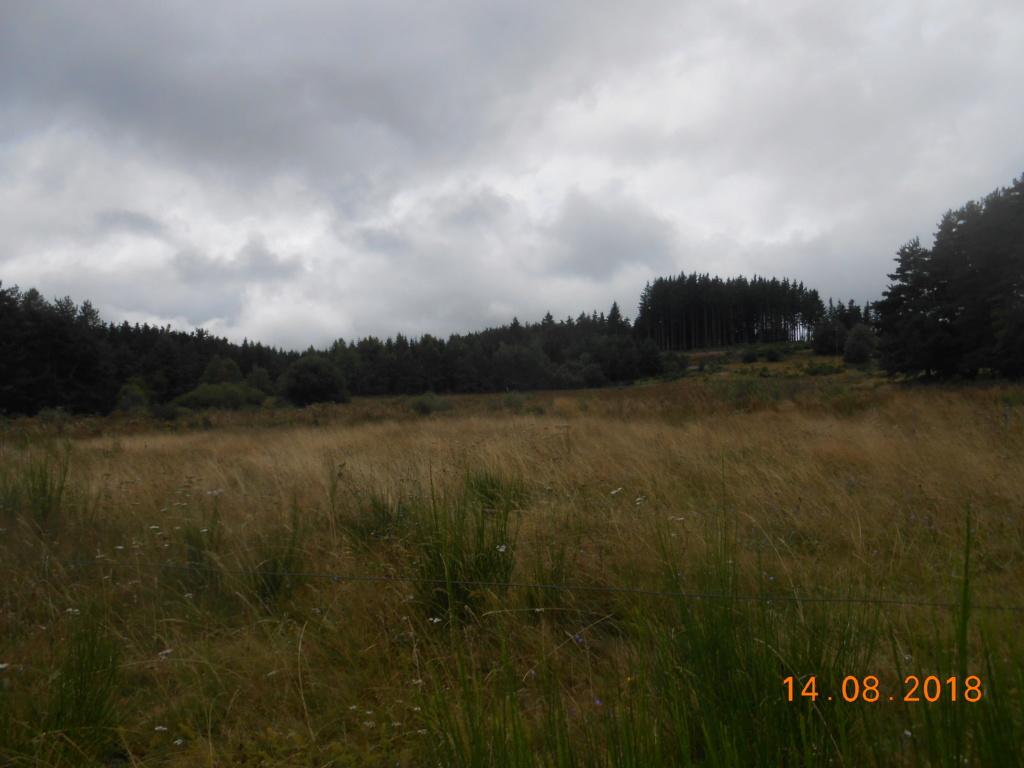 """Radar air """"Tapir"""", Devesset (près Tournon, 07) Malfra11"""
