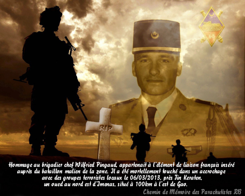 Mali opération SERVAL - Page 2 1_plaq12