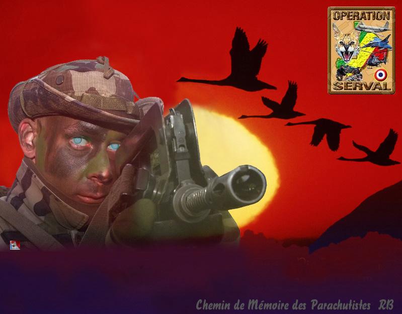 Mali opération SERVAL - Page 2 2_chem10