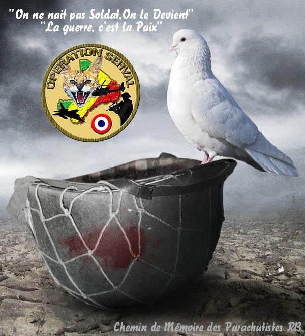 Mali opération SERVAL - Page 2 4_chem12