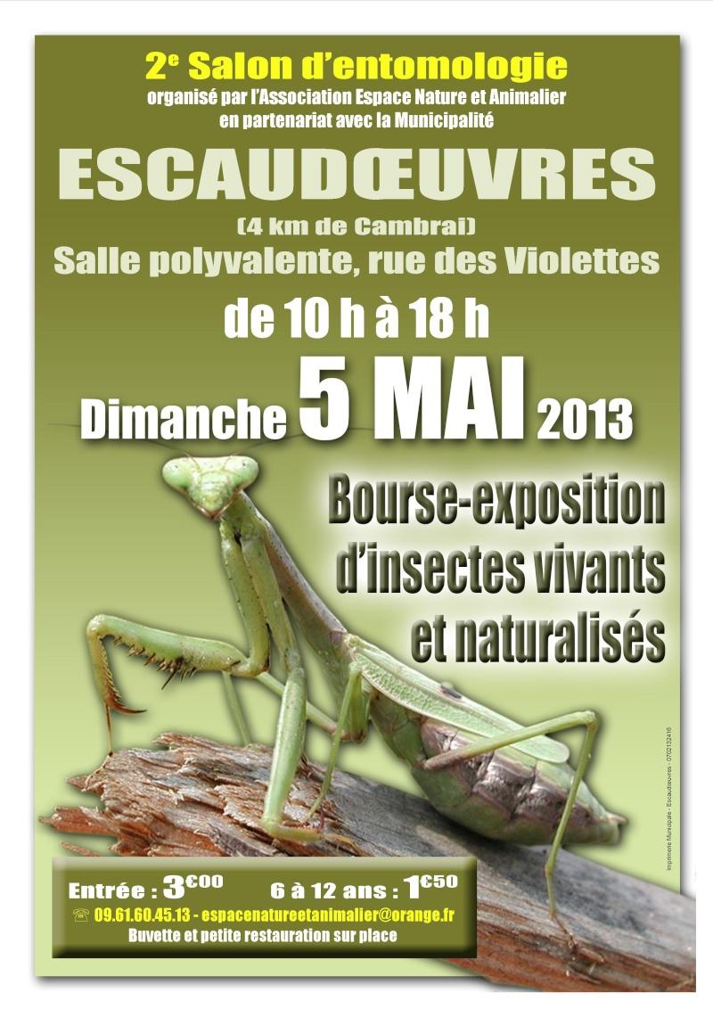 salon d'entomologie  Escaudoeuvres 5 mai 2013 Entomo10