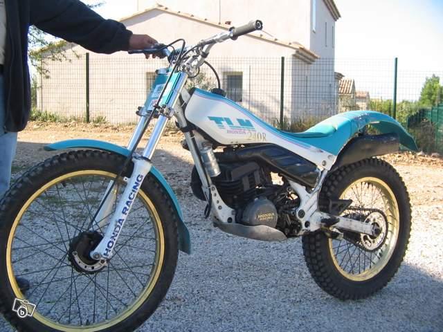 Honda 240 tlm trial 03526810