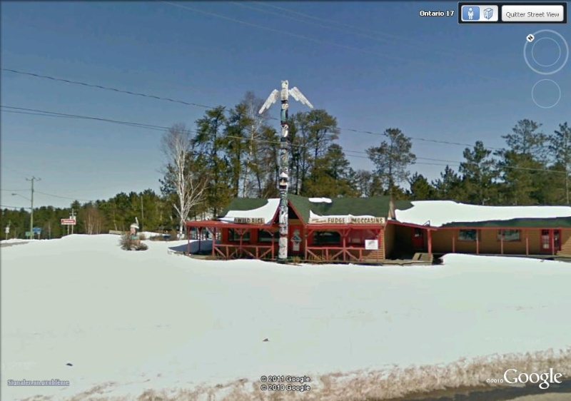 STREETVIEW : les totems Moose_10