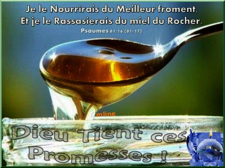 Grâce à demander en ce temps Pascal (Mardi de Pâques) 14902010