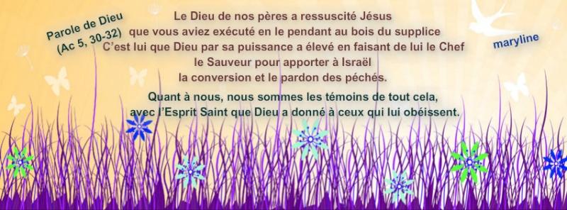 Chemin de Bénédiction en ce Temps Pascal Pizap_60