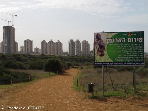 Herborisations en Israël et en Jordanie - Page 5 Img_0811
