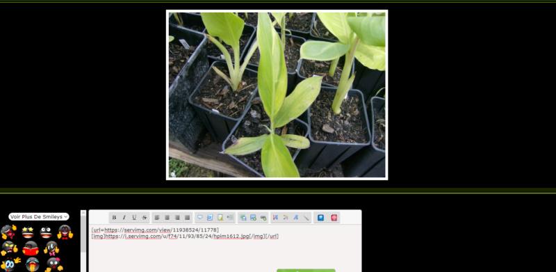 *RESOLU*[PhpBB2] Encadrement des photos dans le .preview .postbody Sans_t61