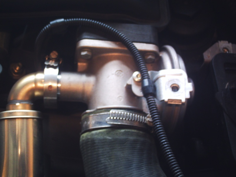 [Moteur M47N] Remplacement des bougies de préchauffage Phto0015