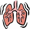 Bronchiëctasieën