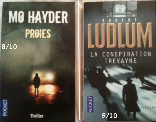 Les thrillers - Page 3 Mes2li10