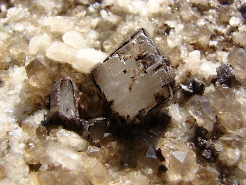 Quartz & minéraux du massif du Mont Blanc secteur Argentière Dsc05011