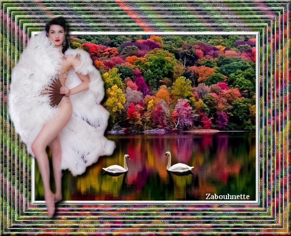 Tableaux avec Photofiltre de Zabouh - Page 2 Cygnec10