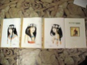Collection n°260 : NaNoY Collec Img_0115