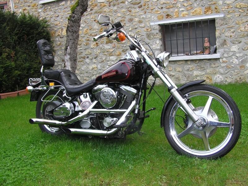 Combien de Softail sur le forum Passion-Harley - Page 2 P4220010