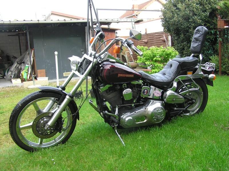 Combien de Softail sur le forum Passion-Harley - Page 2 P4220011