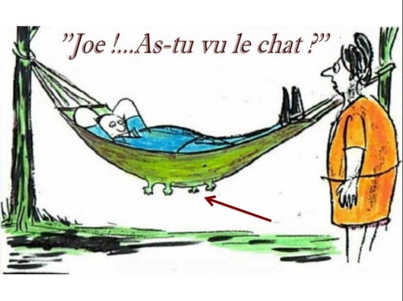 Humour en image ... - Page 3 Captur74