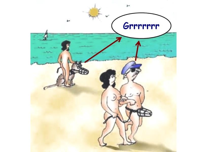 Humour en image ... - Page 3 Captur80