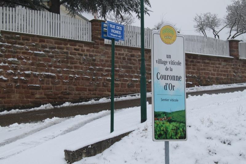 Vive la neige à Wangen ! - Page 5 Img_1710
