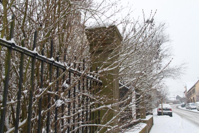 Vive la neige à Wangen ! - Page 5 Img_1711