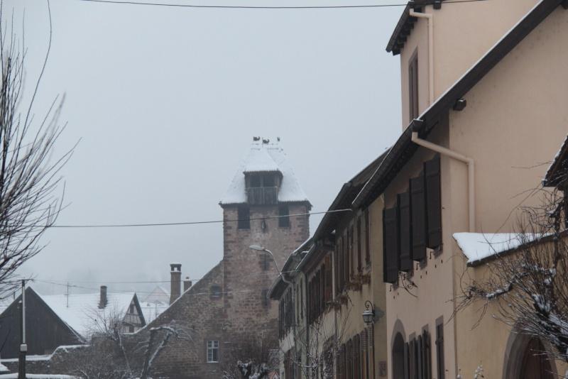 Vive la neige à Wangen ! - Page 5 Img_1713