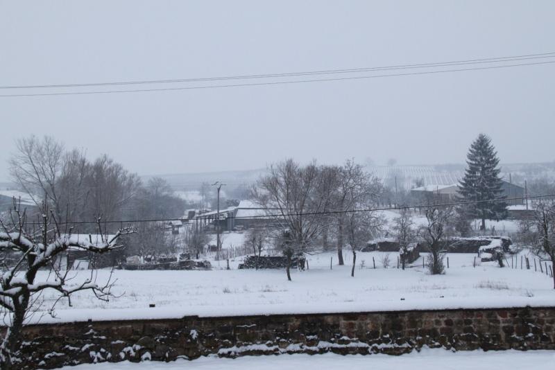 Vive la neige à Wangen ! - Page 5 Img_1722