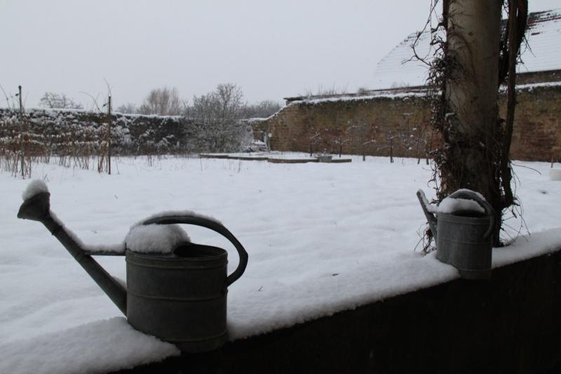 Vive la neige à Wangen ! - Page 5 Img_1725