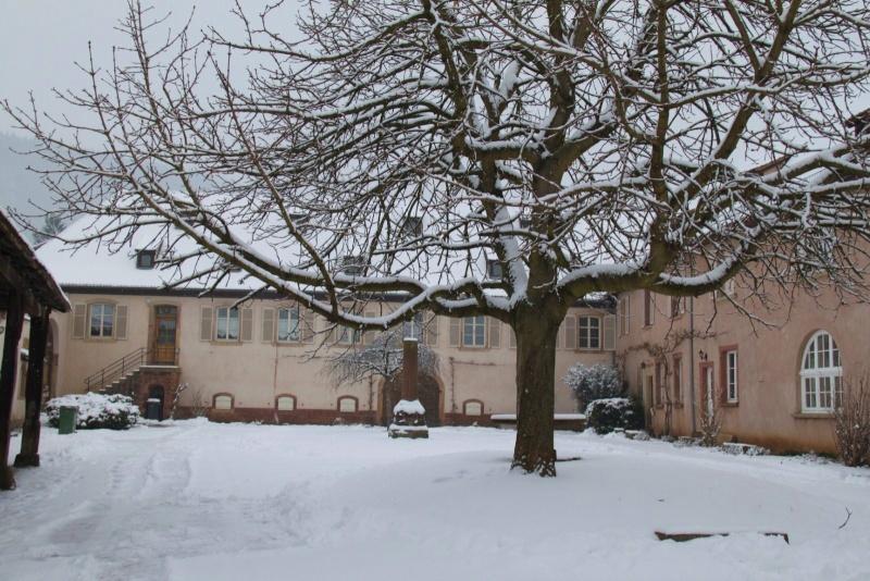 Vive la neige à Wangen ! - Page 5 Img_1726