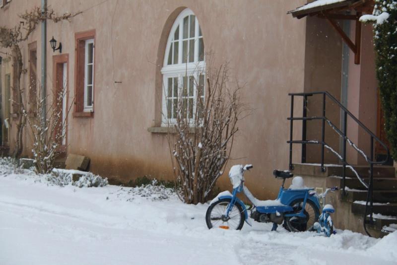 Vive la neige à Wangen ! - Page 5 Img_1729