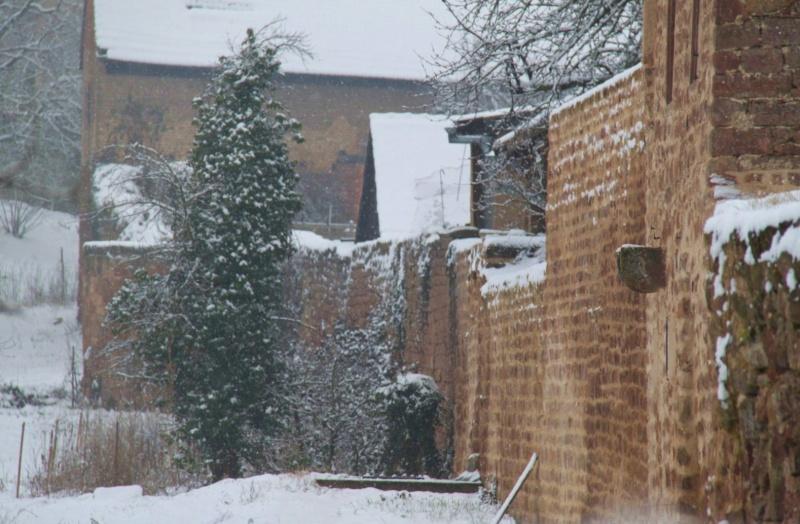 Vive la neige à Wangen ! - Page 5 Img_1732
