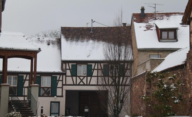 Vive la neige à Wangen ! - Page 5 Img_1735