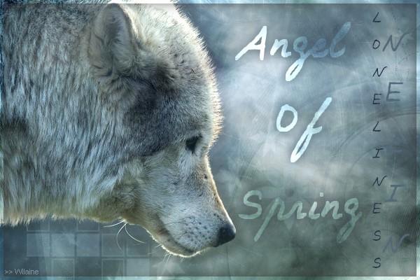 >> Wilaine. Angelo11