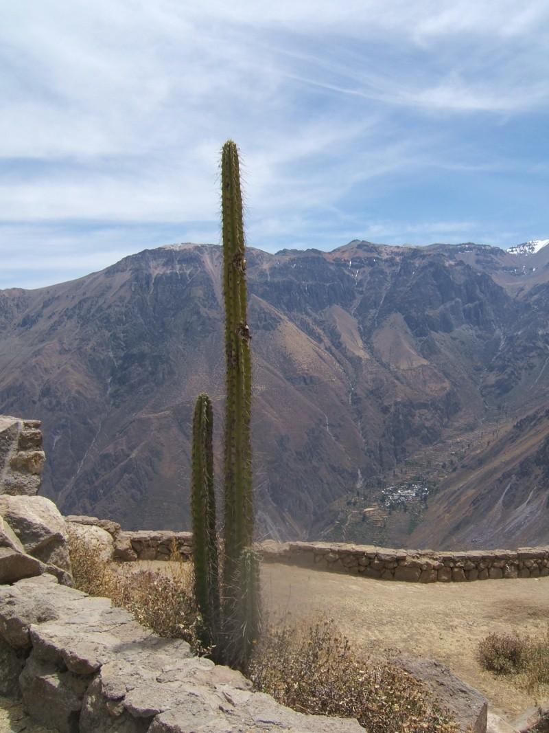 Le Pérou par Françoise Beaufils Parou_60