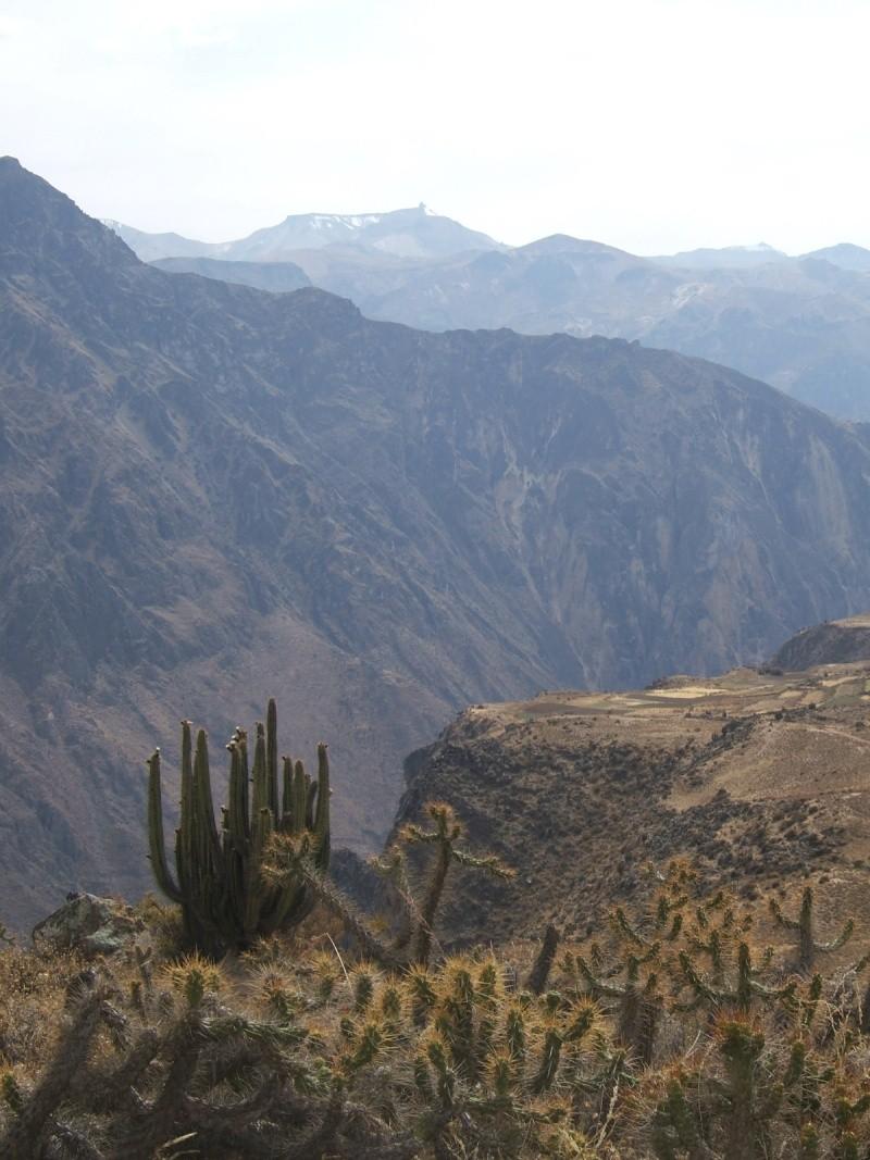 Le Pérou par Françoise Beaufils Parou_73