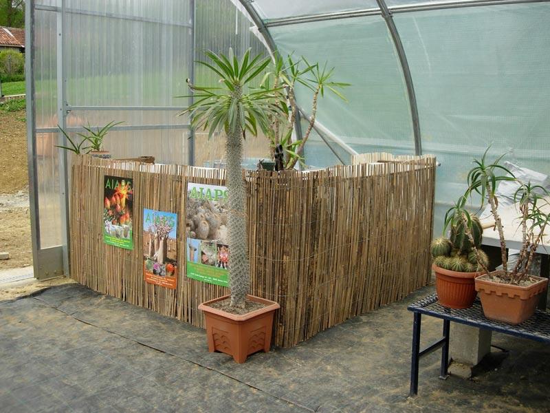 La ferme aux cactus dans le Gers Photo-14