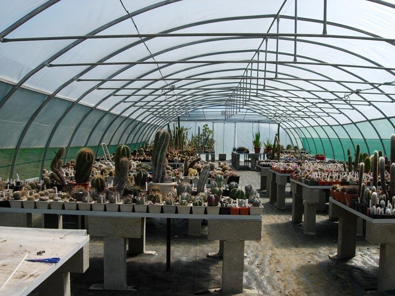 La ferme aux cactus dans le Gers Photo-15