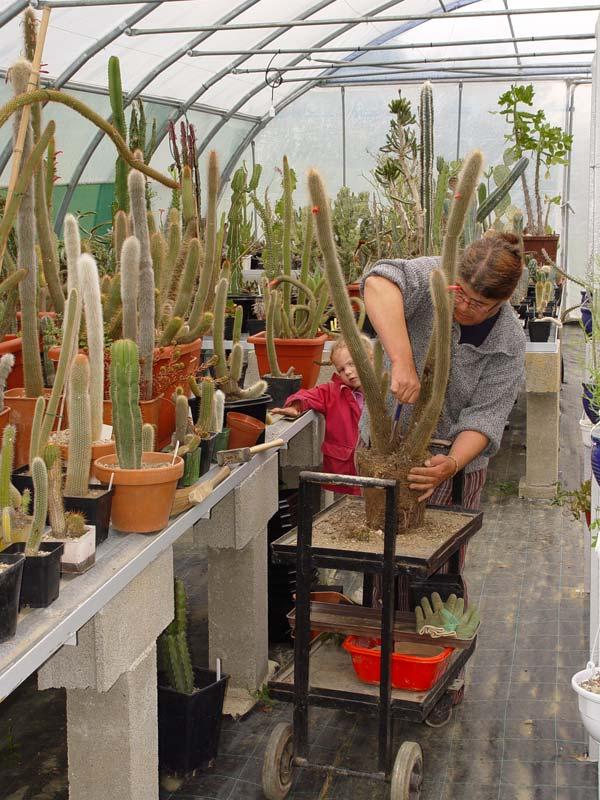 La ferme aux cactus dans le Gers Photo-30