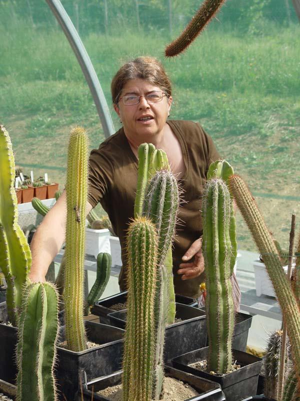 La ferme aux cactus dans le Gers Photo-32