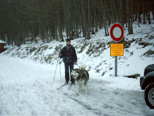 ski_de10.jpg