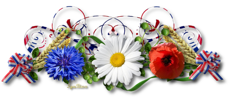 Les bonjours et contacts jounaliers du Mois de Mai 2019 2014-010