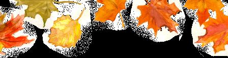 Les bonjours et contacts jounaliers du Mois de Septembre 2019 - Page 2 25091910
