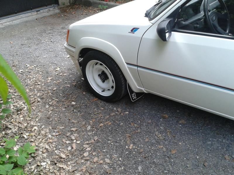 [bencitrouille]  Rallye - 1294 - blanc - 1989 2013-015